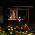 Photos: 多摩野神社