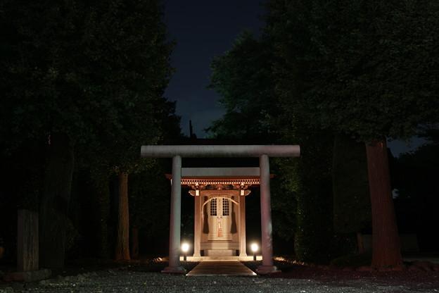 多摩野神社
