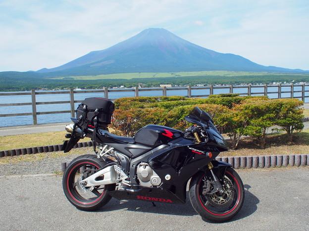 山中湖湖畔で富士山と~2015.8.11