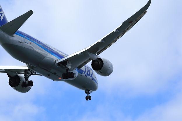 ANA B787-8 Landing
