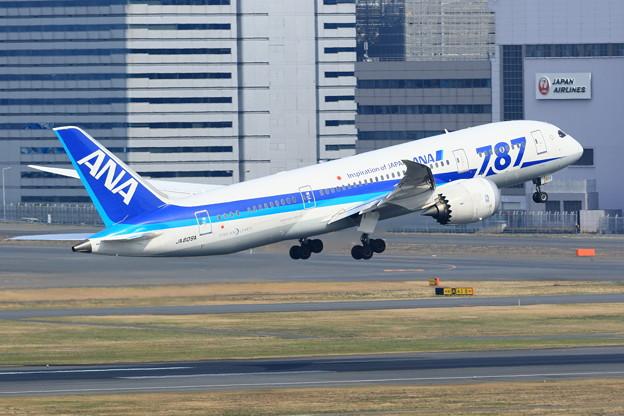羽田空港 南風運用