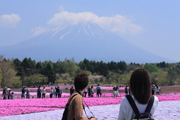 主役はやっぱり富士山