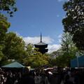 弘法市の賑わい
