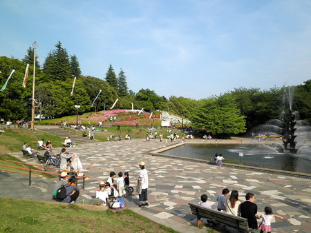 つつじ_世田谷公園d_鯉のぼり