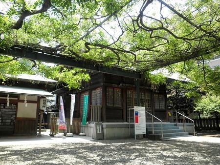 国領神社-04b藤棚からの拝殿