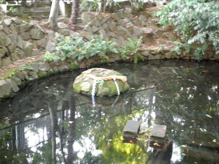 泉龍禅寺(狛江)_弁財天-02弁財天池b