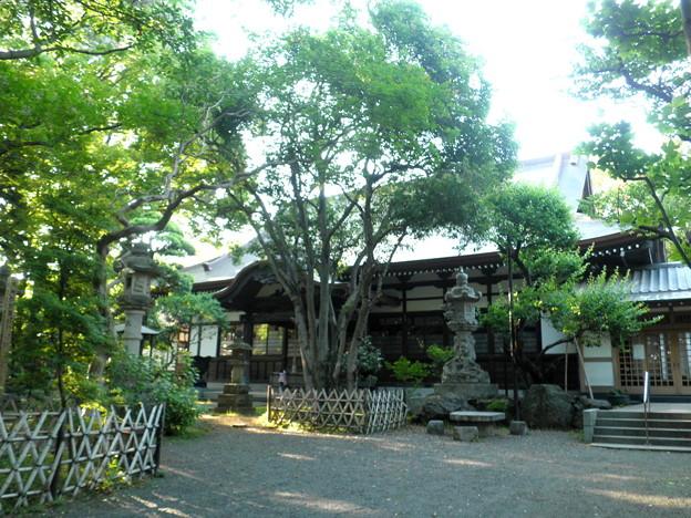 Photos: 泉龍禅寺(狛江)-06本堂