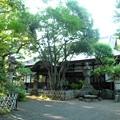 泉龍禅寺(狛江)-06本堂