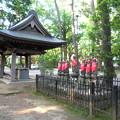 泉龍禅寺(狛江)-03a六地蔵と手水舎