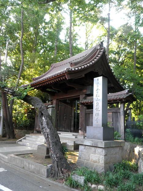 Photos: 泉龍禅寺(狛江)-01寺号標・山門