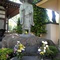 Photos: 西照寺-02親鸞聖人尊像