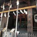伊豆美神社(狛江)-07b