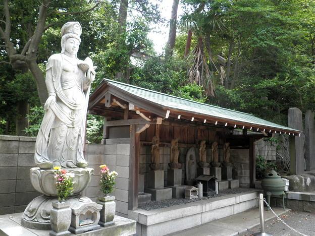 Photos: 明照院(入間町)-04聖観世音菩薩像・六地蔵・石碑a