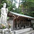 明照院(入間町)-04聖観世音菩薩像・六地蔵・石碑a