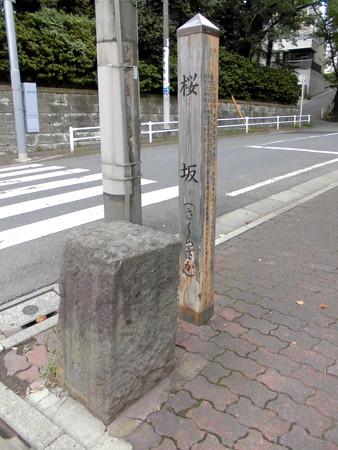 桜坂(大田区田園調布)-05桜橋