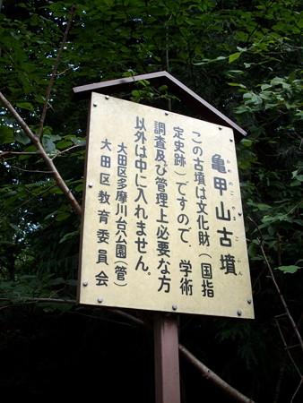 多摩川台公園-08多摩川台公園古墳群_亀甲山古墳a