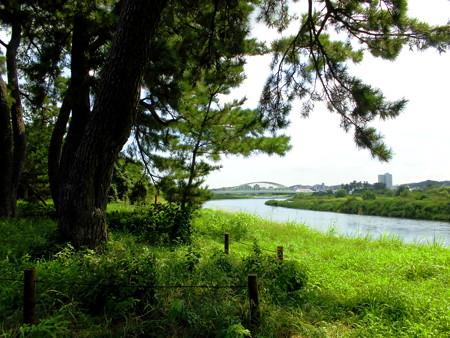 西河原公園-04多摩川