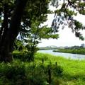 Photos: 西河原公園-04多摩川