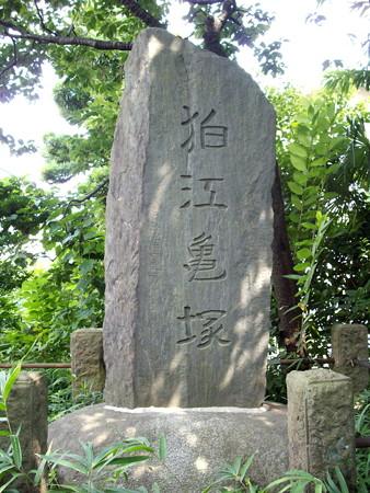 狛江古墳群_亀塚古墳-02狛江亀塚の石碑