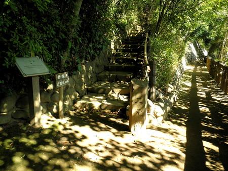 哲学堂公園-27二元衢(にげんく)