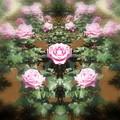 Photos: 薔薇の言葉d-02