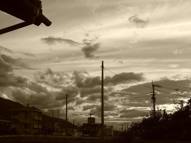 Photos: セピア2