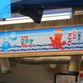Photos: 江ノ島 たこせんべい看板