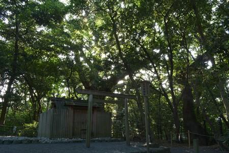 月夜見宮 - 高河原神社5