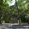 写真: 御塩殿神社 - 御塩殿神社6