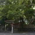 写真: 御食神社2