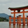 厳島神社鳥居