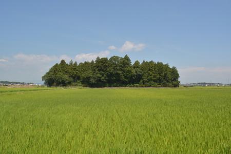 小社神社1