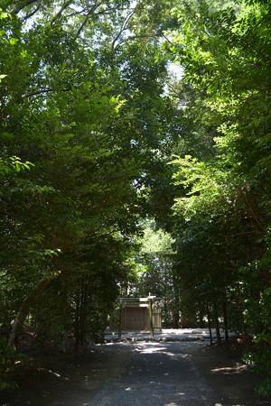 小俣神社2