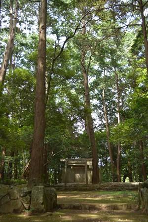 津布良神社2