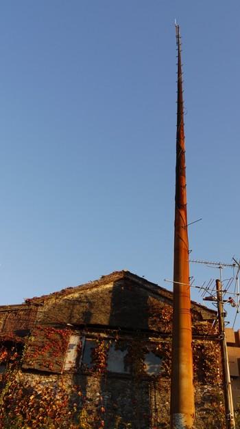 タケノコみたいな柱