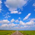 写真: 青空への滑走路