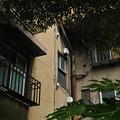 Photos: 同潤会 上野下アパート 05
