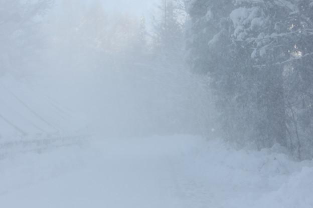 Photos: IMG_7298 吹雪!?