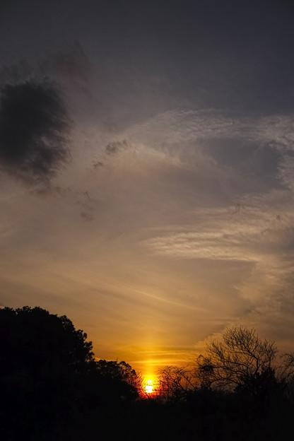 日暈と太陽柱
