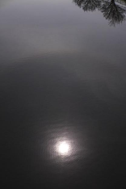 水面の日暈