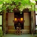 化野念仏寺12