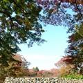 Photos: 高取城跡紅葉19