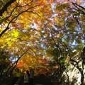 Photos: 談山神社紅葉16