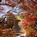 Photos: 談山神社紅葉08