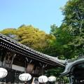 Photos: 東大寺03