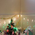 写真: 全体像@2012クリスマス