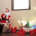 写真: 全体の様子@2012クリスマス