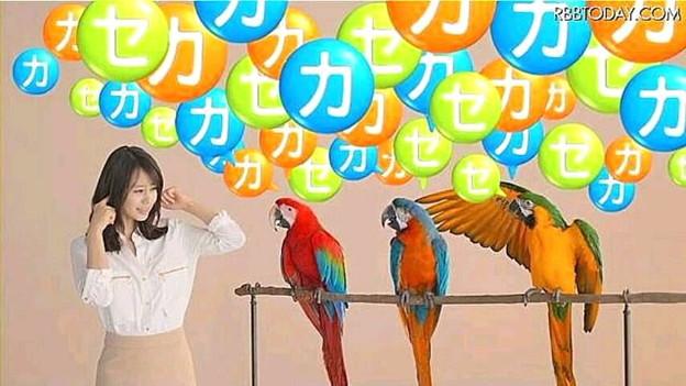 """フォト蔵【新CM】同社の""""2012...アルバム: Twitter (316)写真データフォト蔵ツイート"""