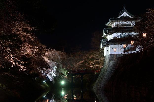 弘前公園・夜桜見物 (3)
