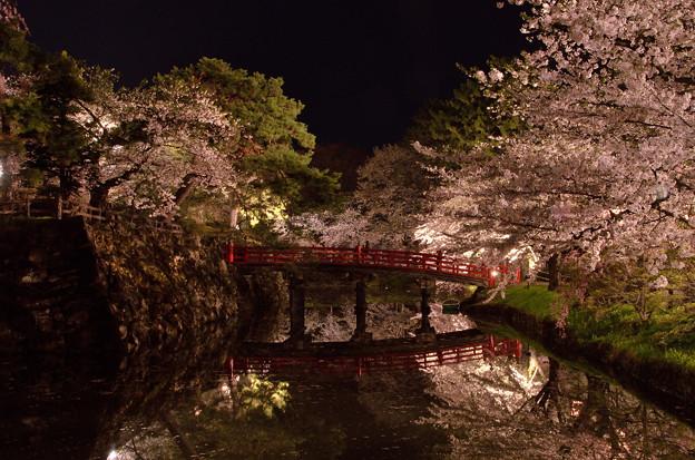 弘前公園・夜桜見物 (4)